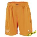 schweiz-goalkeeper-shorts-j