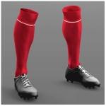 albanien-home-socks